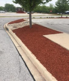 Commercial Mulch