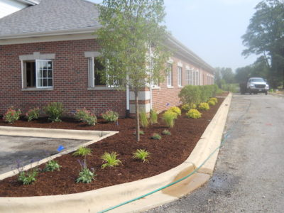 commercial landscaping plainfield