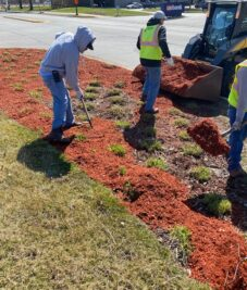 Spring Commercial Landscaping Joliet